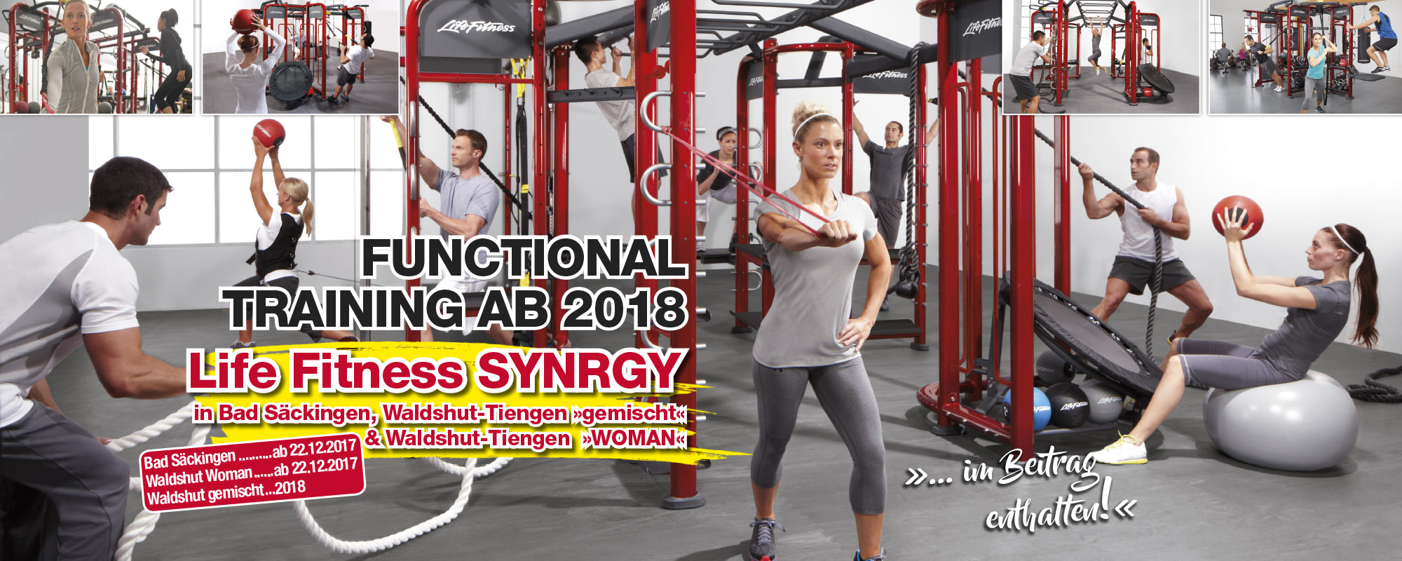 Synrgy360- The Complete Workout Solution - Pro Fitness Discounter